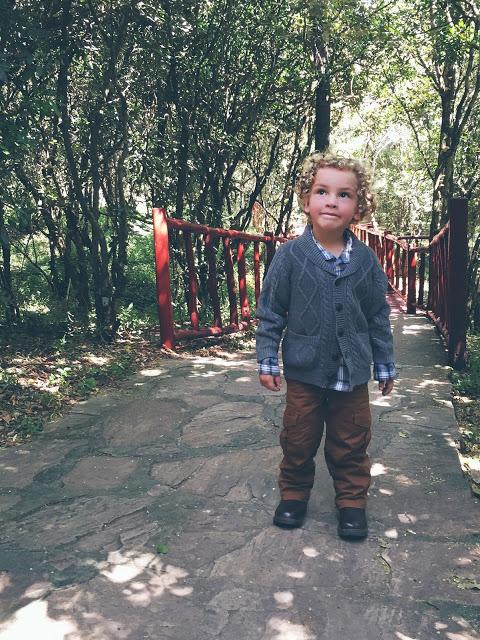stylish toddler boys safari outfit