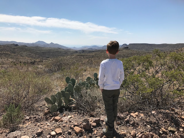 Overlooking the flat irons of El Solitario in Big Bend State Park