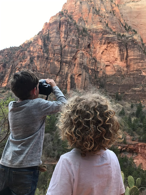 Southwest national parks road trip with kids - Zion