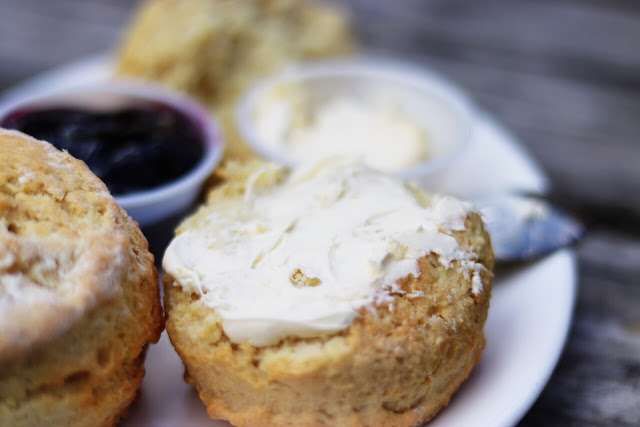 scones and devonshire clotted cream at watersmeet house