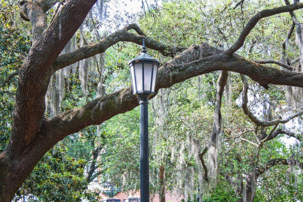 Savannah Georgia weekend getaway itinerary