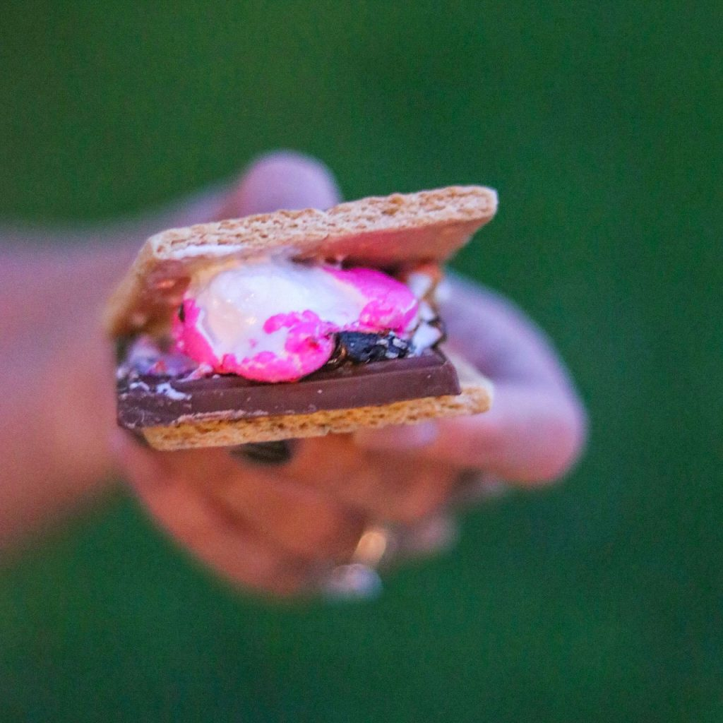 s'mores variations: s'mores with peeps