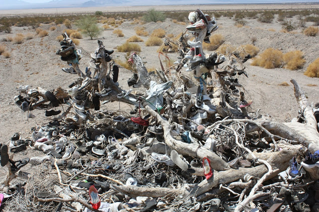 things to see on route 66: shoe tree in amboy, ca