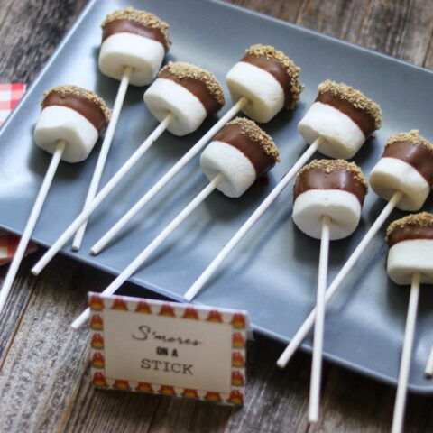 S'mores on a Stick: camping party food idea