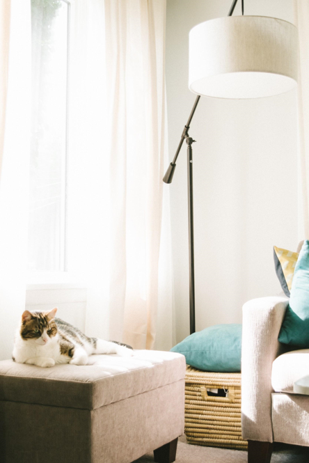New Year, New House: Organizing and Decluttering Tips for 2020