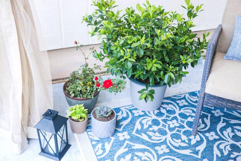 DIY patio ideas on a budget