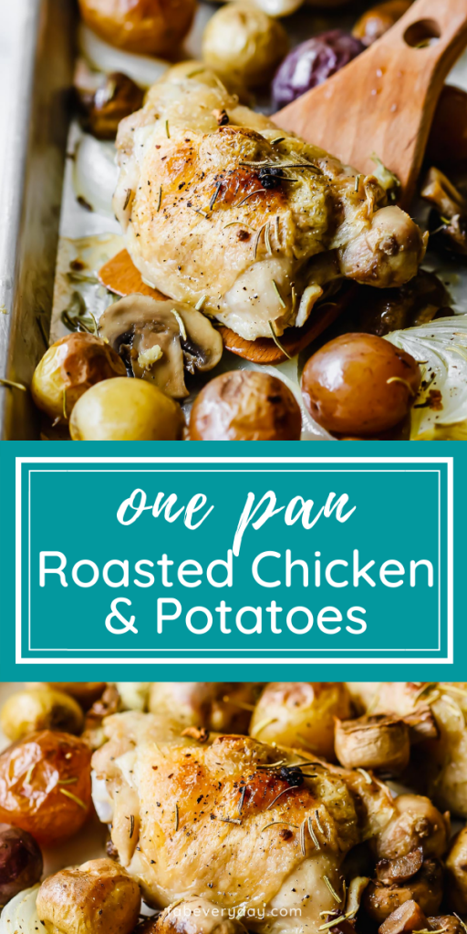 One Pan Roasted Chicken and Potatoes (sheet pan chicken recipes)