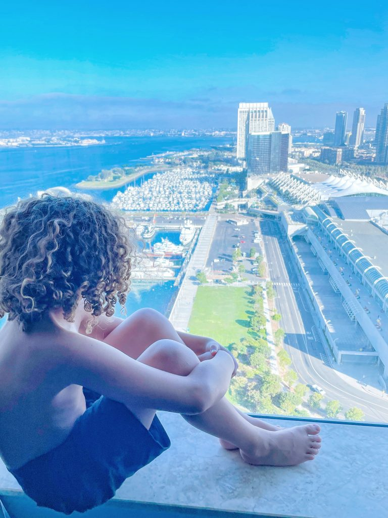 San Diego hotels near Petco Park - the view from our room at Hilton San Diego Bayfront